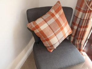 Ginger Tartan in the Lounge